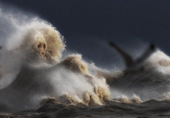 foo-evil-wave-1024x715